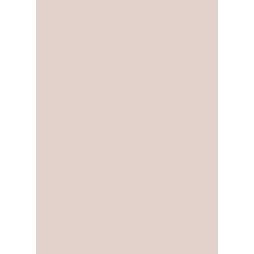 Westcott Solid Color Matte Vinyl Backdrop with Grommets (5 x 7', Brown)
