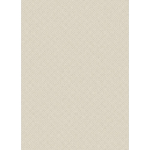 Westcott Subtle Hatched Art Canvas Backdrop with Grommets (5 x 7', Tan)