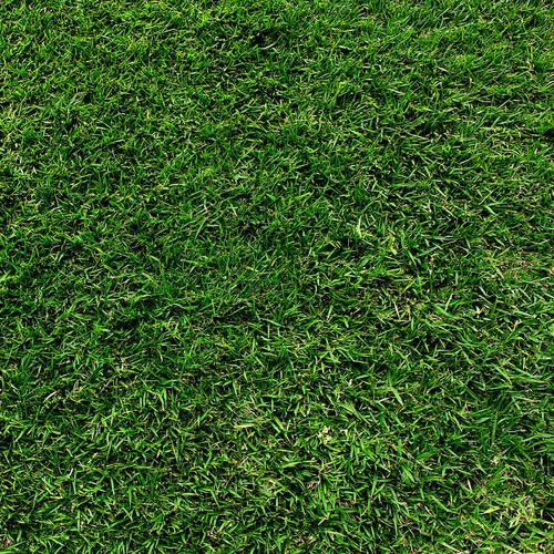 Westcott 3.5 x 3.5' Green Grass/Vinyl Backdrop - Multi Color