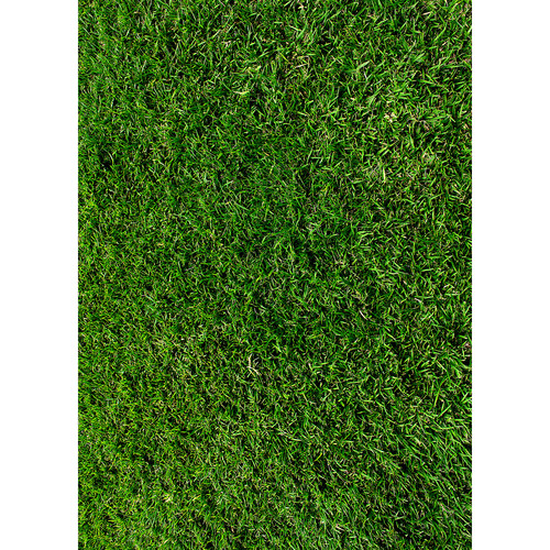 Westcott Green Grass Art Canvas Backdrop with Grommets (5 x 7', Multi-Color)