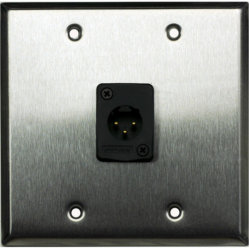Whirlwind 2-Gang Wall Mounting Plate with 1 Whirlwind WC3M Male XLR (Stainless Steel Finish)