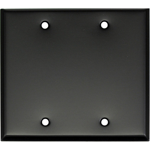 Whirlwind 2-Gang Blank Wall Mounting Plate (Black Finish)