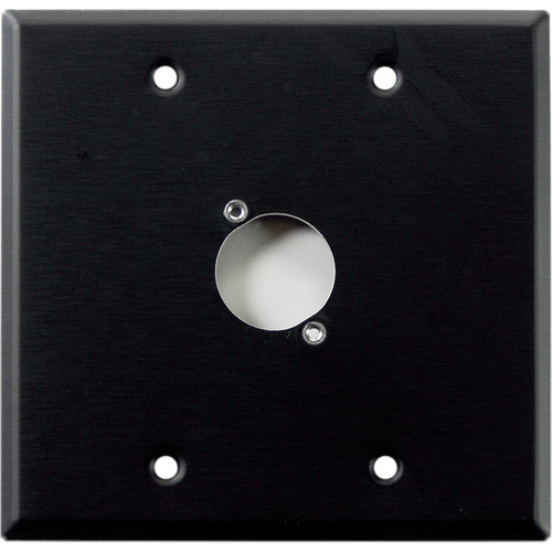Whirlwind WP2B/1H 2-Gang Wall Plate Punched for 1 Whirlwind/Switchcraft D3F Terminal (Black Finish)