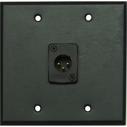 Whirlwind 2-Gang Wall Mounting Plate with 1 Whirlwind WC3M Male XLR (Black Finish)