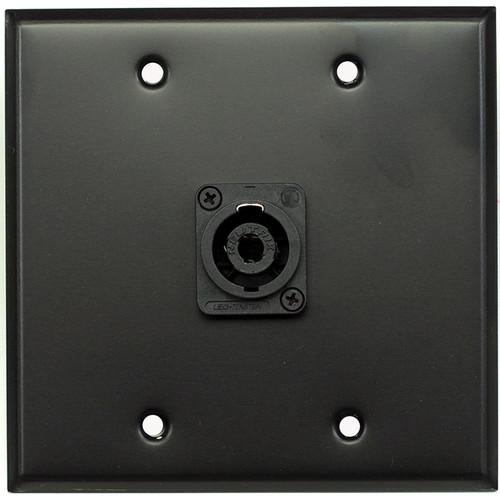 Whirlwind WP2B/1NL4 2-Gang Wall Plate with 1 Neutrik NL4 Speakon Terminal (Black Finish)