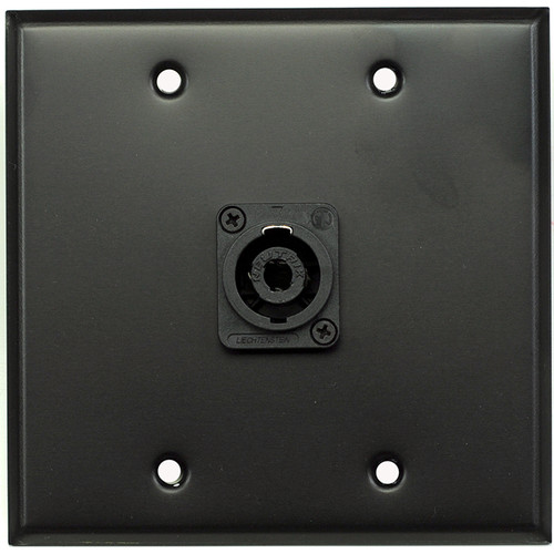 Whirlwind 2-Gang Wall Mounting Plate with 1 Neutrik NL4 Speakon (Black Finish)
