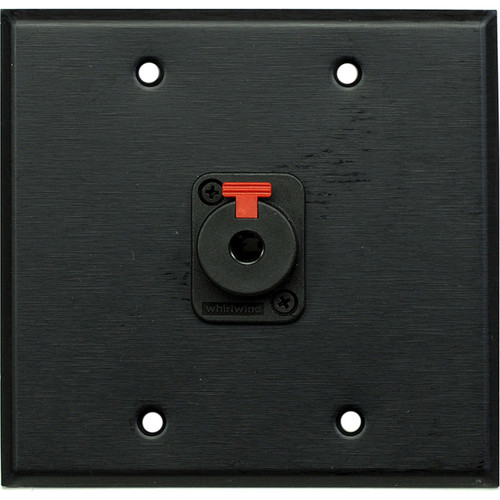 """Whirlwind WP2B/1QW 2-Gang Wall Plate with 1 Whirlwind WCQF 1/4"""" Terminal (Black Finish)"""
