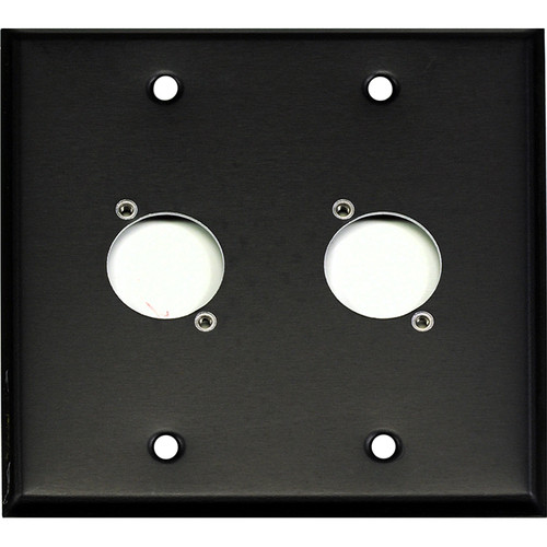 Whirlwind WP2B/2H 2-Gang Wall Plate Punched for 2 Whirlwind/Switchcraft D3F Terminals (Black Finish)