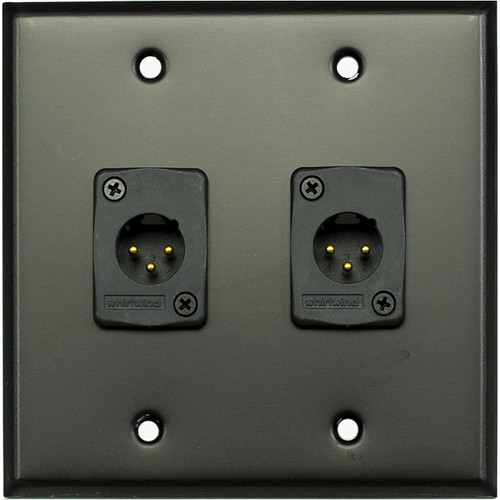 Whirlwind 2-Gang Wall Mounting Plate with 2 Whirlwind WC3M Male XLRs (Black Finish)