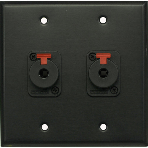 "Whirlwind 2-Gang Wall Mounting Plate with 2 Whirlwind WCQF 1/4"" Jacks (Black Finish)"