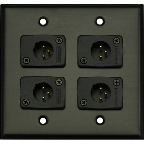 Whirlwind 2-Gang Wall Mounting Plate with 4 Whirlwind WC3M Male XLRs (Black Finish)