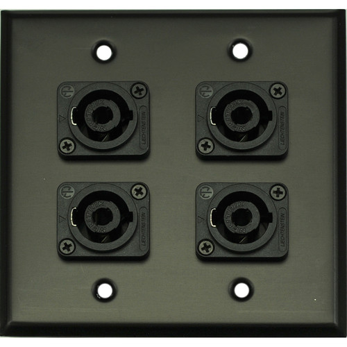 Whirlwind 2-Gang Wall Mounting Plate with 4 Neutrik NL4 Speakons (Black Finish)