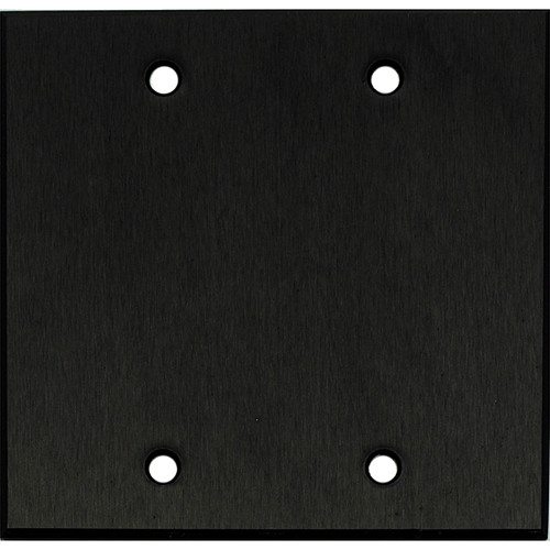 "Whirlwind 2-Gang Blank Wall Mounting Plate (.125"" Black Anodized Aluminum Finish)"