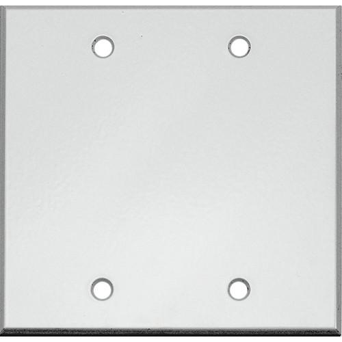 """Whirlwind 2-Gang Blank Wall Mounting Plate (.125"""" Semi-Gloss White Finish)"""