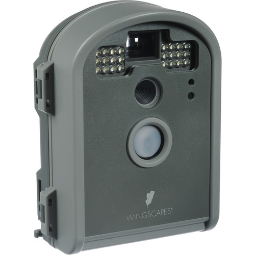wingscapes birdcam pro motion activated digital wildlife camera