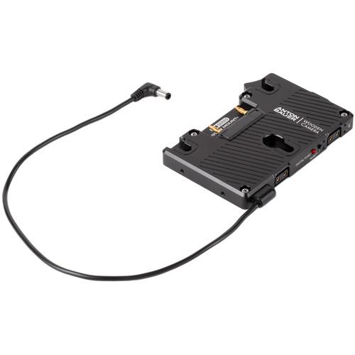 Wooden Camera WC Pro Gold Mount (Sony FS7, FS5, Panasonic EVA1)
