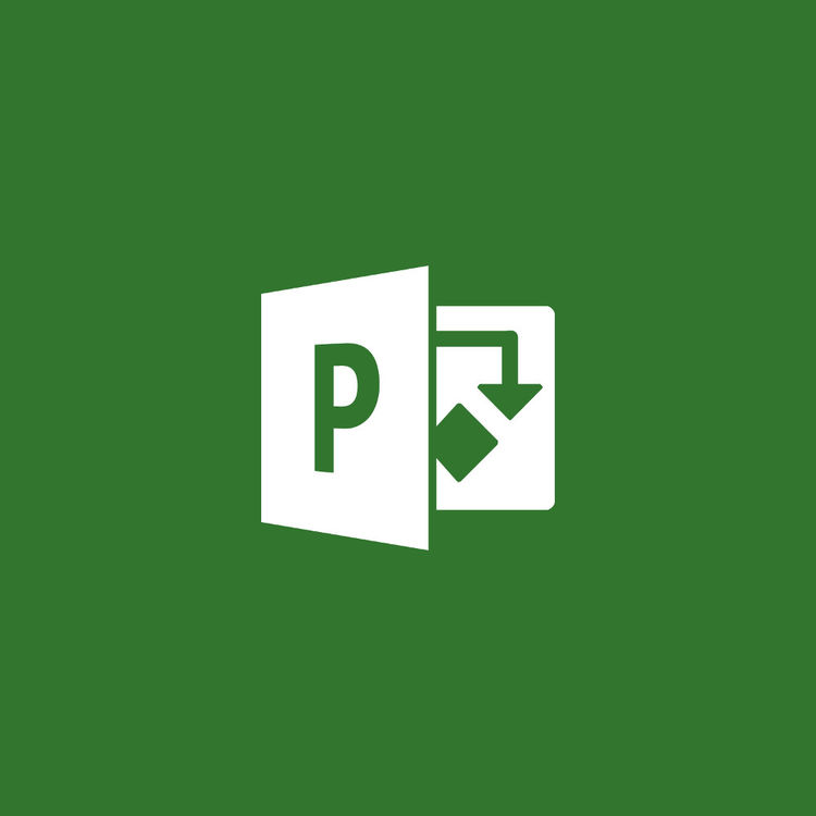 Microsoft Project Professional 2019 (1-User License, Download)