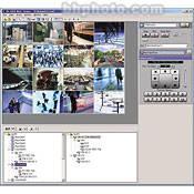 JVC VN-S400U Multi-Viewer Software for V.Networks Cameras