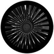 "Rosco Standard Black and White Glass Spectrum Gobo #81154 Mercury (86mm = 3.4"")"