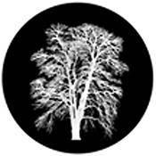 """Rosco Standard Black and White Glass Spectrum Gobo #81179 Barren Inverted (86mm = 3.4"""")"""