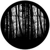"""Rosco Standard Black and White Glass Spectrum Gobo #81175 Blair Woods (86mm = 3.4"""")"""