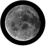"""Rosco Standard Black and White Glass Spectrum Gobo #81174 Full (86mm = 3.4"""")"""