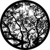 """Rosco Standard Black and White Glass Spectrum Gobo #81177 Skyward (86mm = 3.4"""")"""