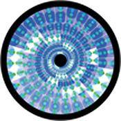 "Rosco Standard Color Glass Spectrum Gobo #86646 Flared Petals (86mm = 3.4"")"