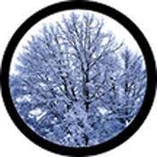 "Rosco Standard Color Glass Spectrum Gobo #86684 Winter Solstice (86mm = 3.4"")"