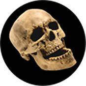 """Rosco Standard Color Glass Spectrum Gobo #86686 Laughing Skull (86mm = 3.4"""")"""