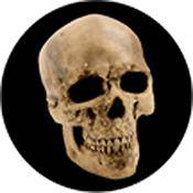 "Rosco Standard Color Glass Spectrum Gobo #86687 Yorick Skull (86mm = 3.4"")"