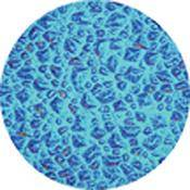 "Rosco Colorwave Effects Color Glass Gobo - #33404 - Cyan Sparkllite (86mm = 3.4"")"
