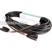 Remote Audio CASN2PXL 2-Pair Audio Snake
