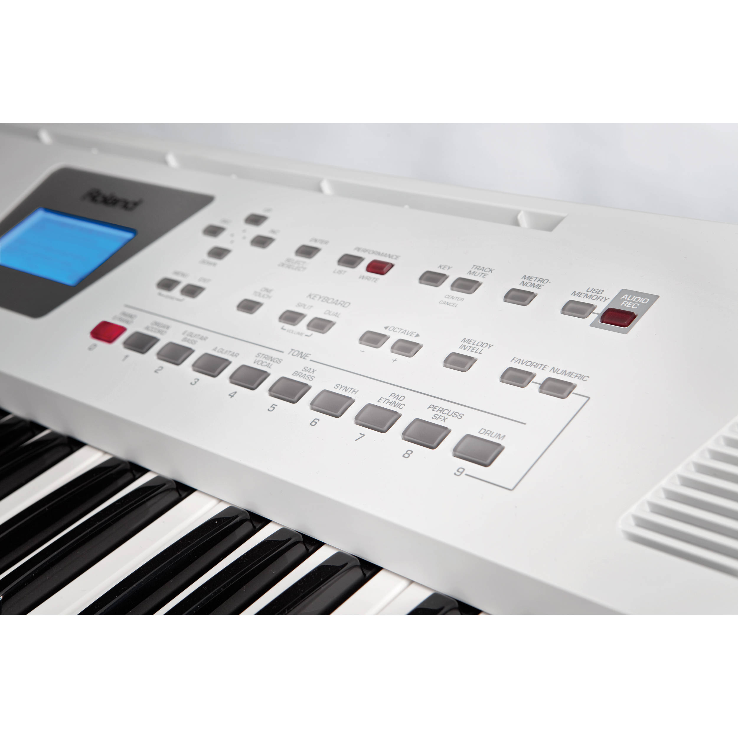 Roland BK-3 Backing Keyboard (White)