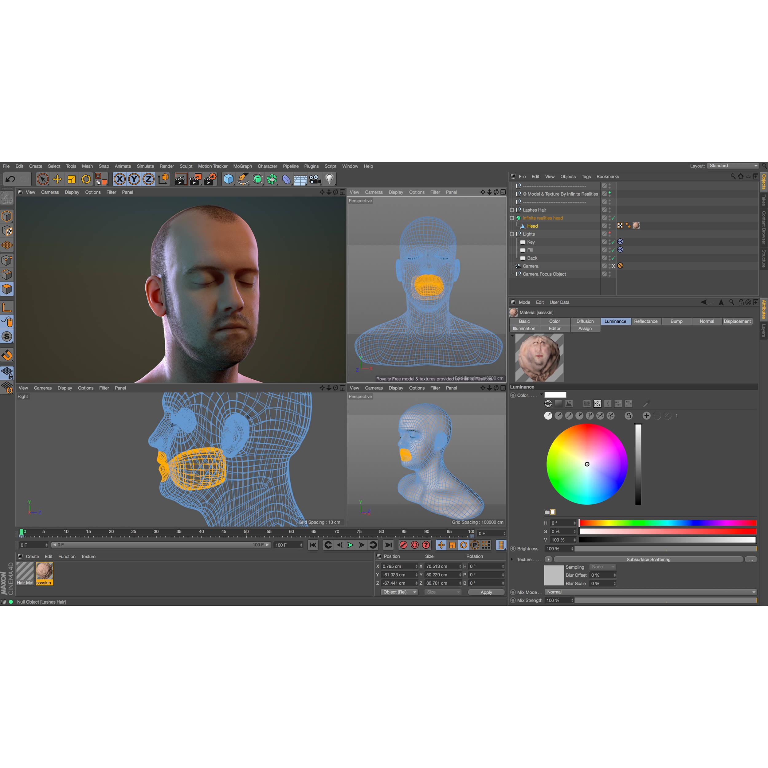 Maxon CINEMA 4D Studio R17 - Upgrade from Studio R15 (Download)
