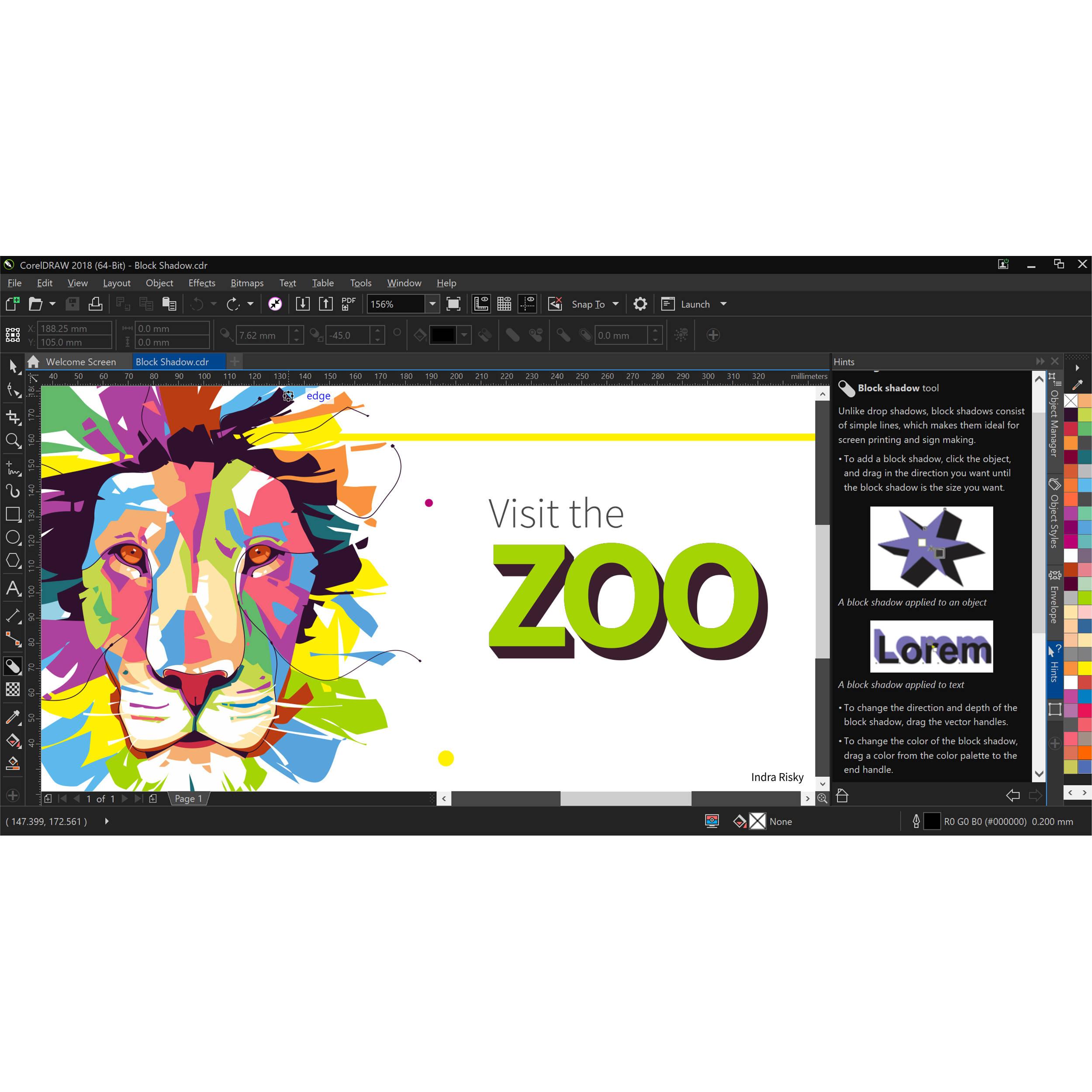 CorelDRAW Graphics Suite 2018 (Standard Edition, Download)