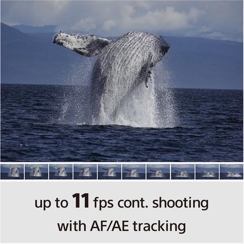 https://static.bhphoto.com/images/multiple_images/images500x500/1566991862_IMG_1243057.jpg