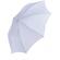 Translucent Umbrella